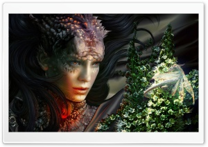 The Dragon Artwork