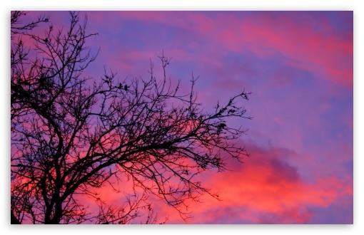 Download My Sunset UltraHD Wallpaper