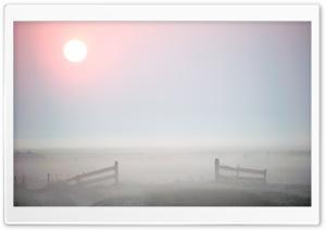 Morning Mist, Terschelling
