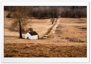 House, Tree, Winter Landscape...