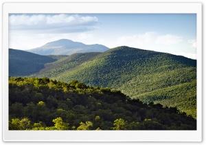 Mount Washington, White...