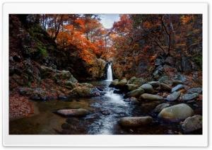 Fall, Waterfall, Trees, Nature