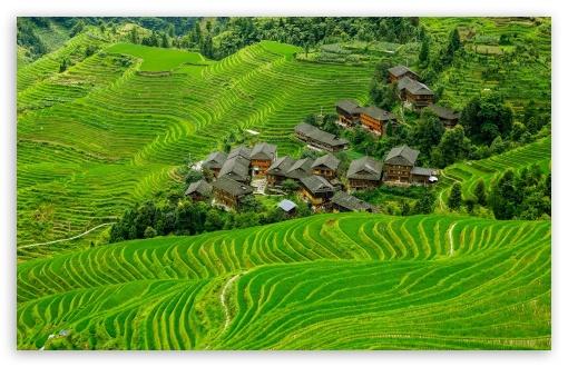 Download China Scenery Village UltraHD Wallpaper