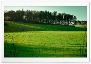 Long Exposure Field