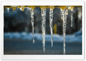 Icicles On A Cold Afternoon