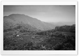 Munnar Mountains