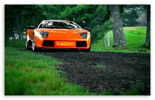 Download Lamborghini Murcielago Orange UltraHD Wallpaper