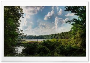 Asylum Lake Preserve,...