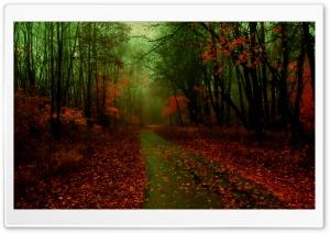 Misty Autumn
