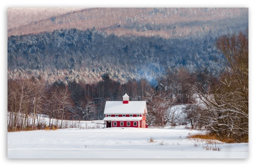 Download Red House, Snow, Winter, Woodland UltraHD Wallpaper