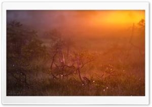 Sunrise At Valkmusa