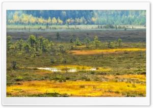 Valkmusa Swamp