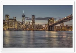 Bright Lights New York City
