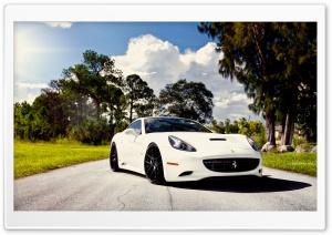 White Ferrari