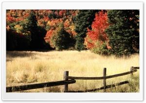 Nebo Loop Autumn