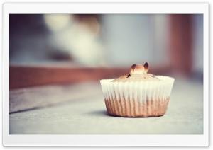 Chesnut Muffin