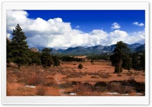 Nature Beauty 1