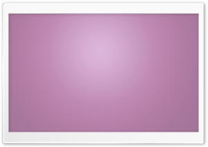 Purple Lilac Color