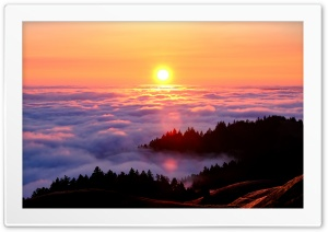 Mount Tamalpais Fog Photography