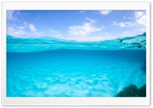 Half Underwater, Half Above