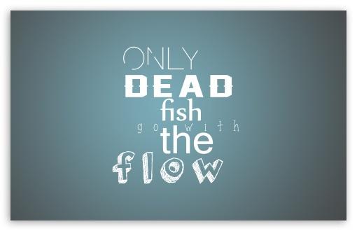 Download dead fish UltraHD Wallpaper
