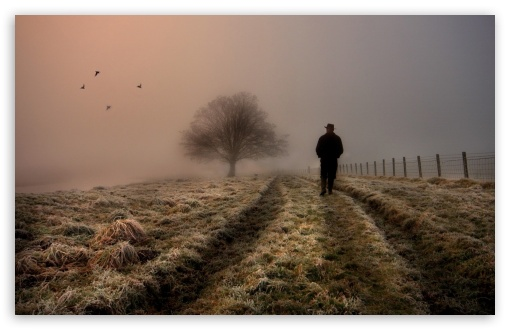 Download Cold Atmosphere UltraHD Wallpaper