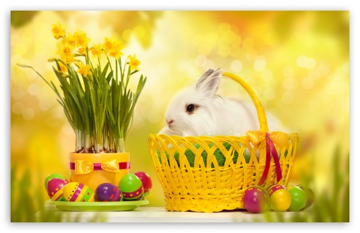 Download Happy Easter Bunny UltraHD Wallpaper