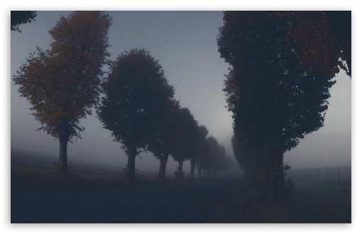 Download Dark Autumn Day UltraHD Wallpaper