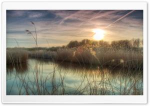 Sunset at Bieslandse Forest