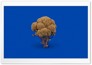 Golden Broccoli