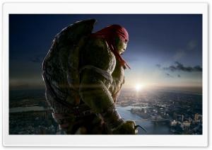Raphael - Teenage Mutant...