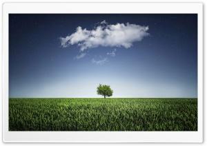 One Tree, One Cloud