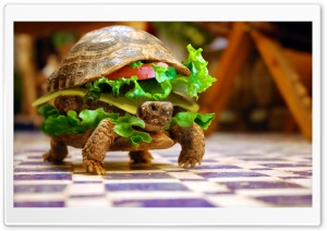 Cheese Turtle Burger By K23