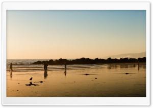 Walk On The Beach Sunset