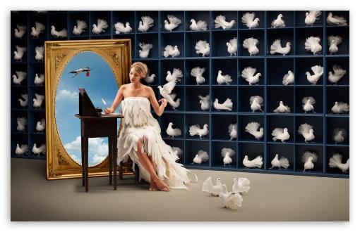 Download Doves UltraHD Wallpaper