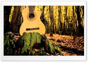 Forrest Guitar