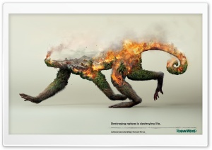 Destruction of Animals...