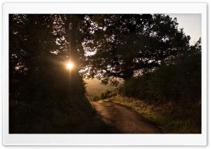 Morning, Autumn Sunshine, Road