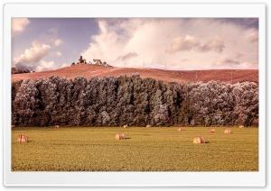Tuscany Countryside...
