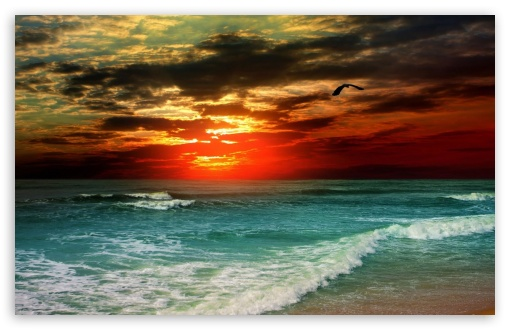 Download Tropical Sunset UltraHD Wallpaper