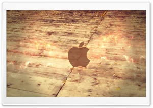 Apple Logo Wood Floor