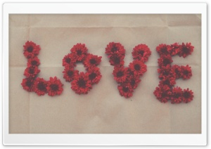 Love, Red Mum Flowers, Old Paper