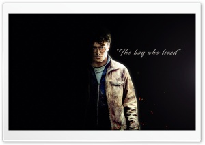 Harry Potter - The boy who lived