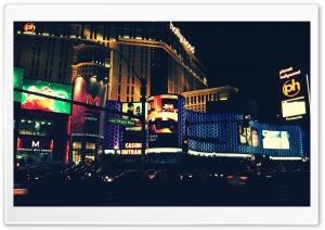Las Vegas Love