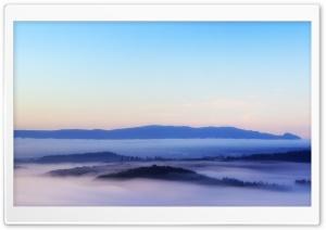 Morning Mist over Flanders Moss
