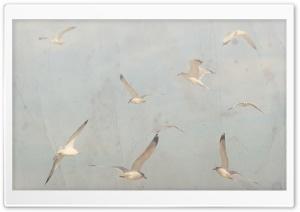 Birds On A Sunny Afternoon