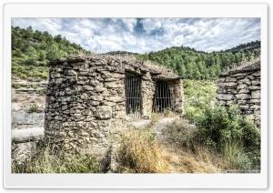 Ricardos Wine Vats II Catalonia