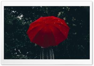 Woman, Red Umbrella, Rain