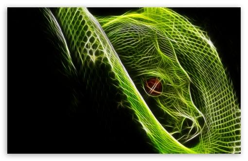Download Other Snake UltraHD Wallpaper