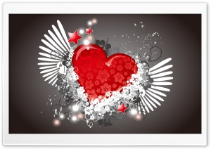 Love 55
